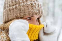 Portrait of a girl warming her breath on a frosty day. Portrait of a girl warming up with her breath, hiding her nose in the collar of a warm sweater on a frosty stock photo