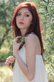 Portrait of a girl with white dress in the olive grove Stock Images