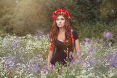 Portrait of girl in wild flowers. royalty free stock images