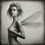 Portrait of girl with wings Stock Images
