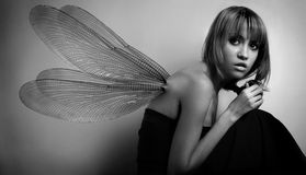 Portrait of girl with wings stock photos