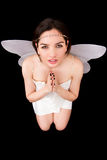 Portrait of girl with wings. Studio shoot photo. Stock Images