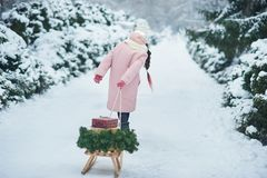 Portrait of girl in winter forest. Girl carries a Christmas tree and presents with sled. The concept of Christmas celebration Child waiting for a Christmas in stock photo