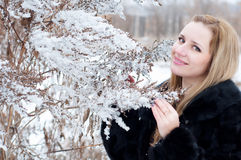 Portrait of a girl in winter. Portrait of young blond woman near the bush sprinkled with snow in the winter holding a branch Stock Images