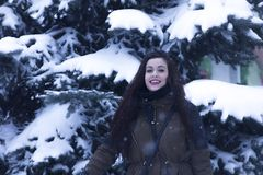 Portrait of girl in wintry pine forest Stock Photography