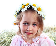 Portrait of the girl in a wreath from field Royalty Free Stock Photography