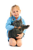 Portrait girlie with cat. On white background stock photography