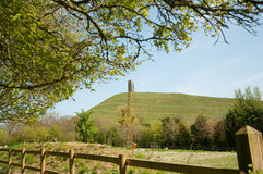 Portrait of glastonbury tor Royalty Free Stock Photography