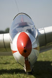 Portrait of a glider on grass. Photo taken at the airfield near Krakow, Poland Stock Images