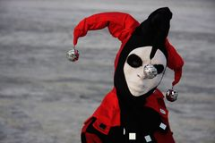 Portrait of gloomy harleyquin Royalty Free Stock Photo