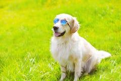 Portrait of Golden Retriever dog in sunglasses sitting Stock Photo