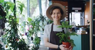 Portrait of good-looking girl holding houseplant standing in flower shop. Portrait of good-looking girl florist holding houseplant standing in flower shop alone stock footage