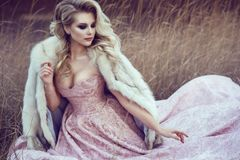 Gorgeous blond lady with luxuriant hairstyle wearing ash rose ball gown sitting in dry grass Royalty Free Stock Photos