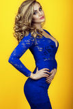 Portrait of gorgeous sexy lady with long luxuriant waved hair wearing transparent blue tight-fitted lace dress with deep V neck Stock Image