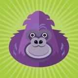 Portrait of a gorilla Stock Photo