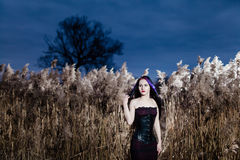 Portrait of the gothic woman in a high, dry grass Royalty Free Stock Images