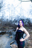 Portrait of the gothic woman near the cold creek Royalty Free Stock Photography