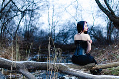 Portrait of the gothic woman near the cold creek Stock Photography