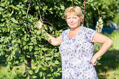 Portrait of the grandmother Stock Photo