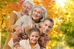 Portrait of grandparents with grandchildren in park royalty free stock images