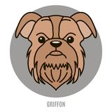 Portrait of Griffon. Vector illustration in style of flat Stock Photography