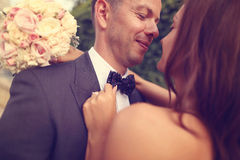 Portrait of a groom and bride Royalty Free Stock Images