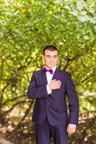 Portrait of groom in garden Royalty Free Stock Photography