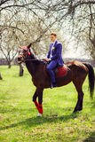 Portrait of the groom on a horse in the spring, apple orchard Stock Photography