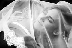 Portrait of groom kissing bride under white veil Stock Images