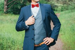 Portrait of the groom outdoor royalty free stock photo