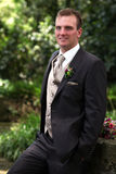 Portrait of groom standing royalty free stock image