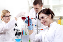Portrait of a group of chemists Royalty Free Stock Photo