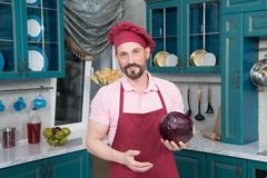 Portrait of Guy prepared fresh vegetables to cook. Bearded young guy in apron on kitchen royalty free stock photography