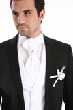Portrait of handosome man in tuxedo Royalty Free Stock Image