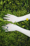 Portrait of hands on a background of flowers. Flowers,give,offer Stock Photo