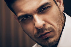 Portrait of handsome adult man. In interior Royalty Free Stock Image