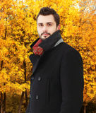 Portrait of handsome bearded man wearing a black coat in autumn Royalty Free Stock Photography