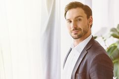 Portrait of handsome businessman looking at camera. In office stock photos