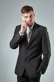 Portrait of a handsome businessman making  phone call against  grey background Stock Images