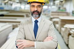 Portrait of handsome businessman in suit with helmet in a wareho Stock Photography
