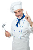 Portrait of a handsome chef Stock Photos