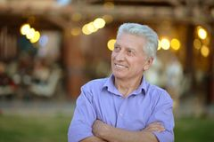 Elderly man posing. Portrait of a handsome elderly man posing Royalty Free Stock Image
