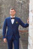 Portrait of a handsome groom Royalty Free Stock Images