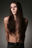 Portrait of a handsome long haired brunet male model Stock Images