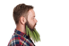 Portrait of handsome man with beard Stock Images