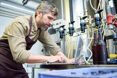 Brewery Owner at Work royalty free stock images