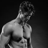 Portrait of a handsome muscular bodybuilder posing Royalty Free Stock Images