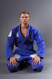 Portrait of Handsome Muscular Jiu Jitsu Fighter Posing. Concept of Healthy Lifestyle Royalty Free Stock Images