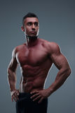 Portrait of a handsome muscular man Royalty Free Stock Images