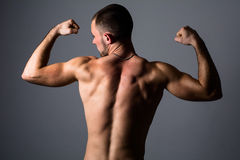 Portrait of a handsome muscular young man Stock Photos